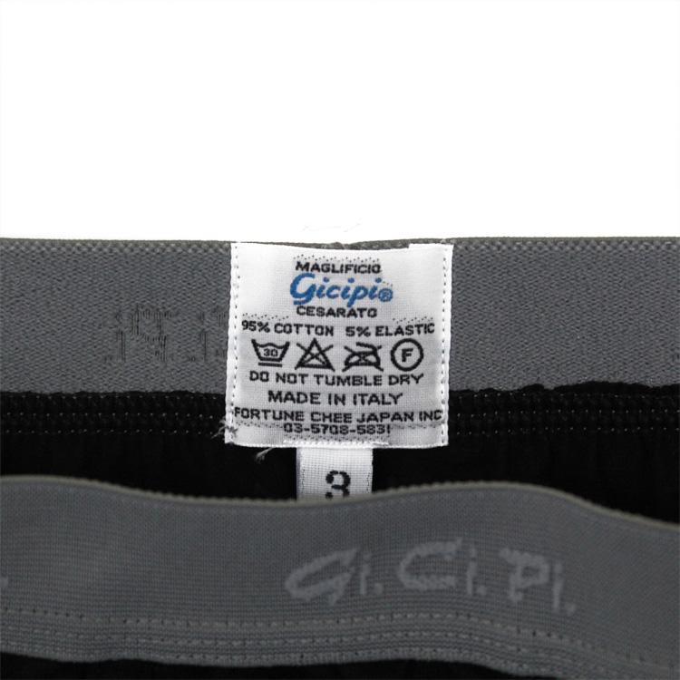 gicipi1501-0040-99
