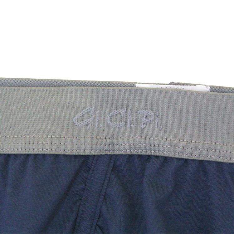 gicipi1501-0041-99-02