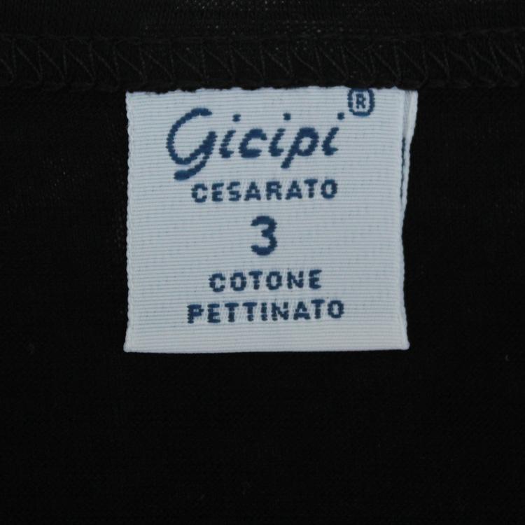 gicipi1502-0264-70