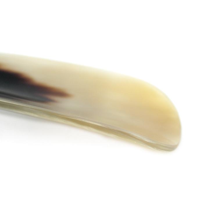 abbeyhorn1602-0055-99