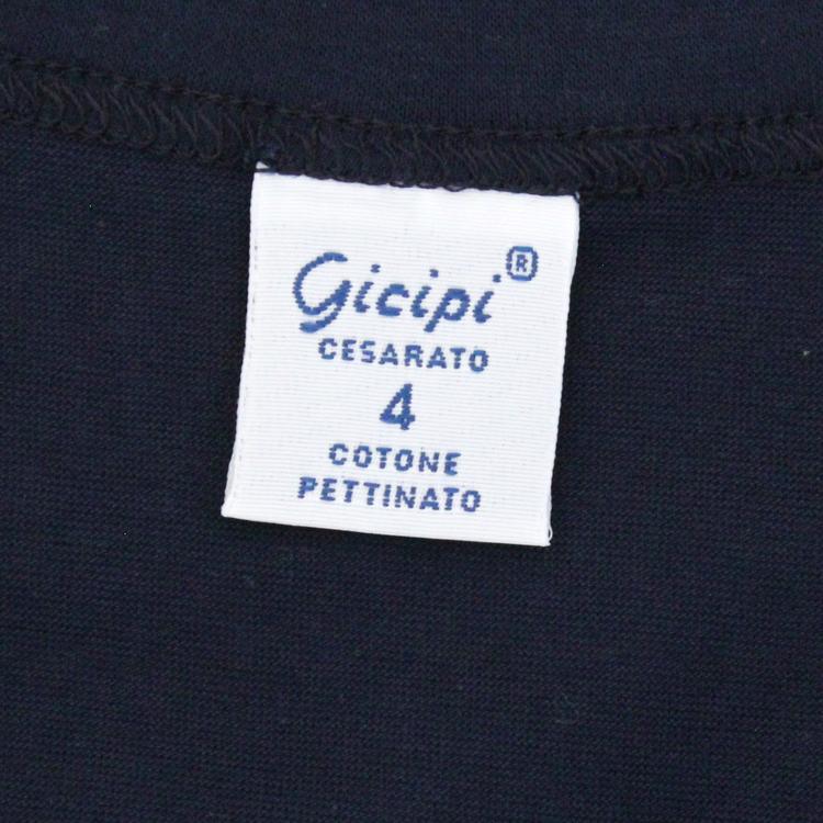 gicipi1801-0046-20