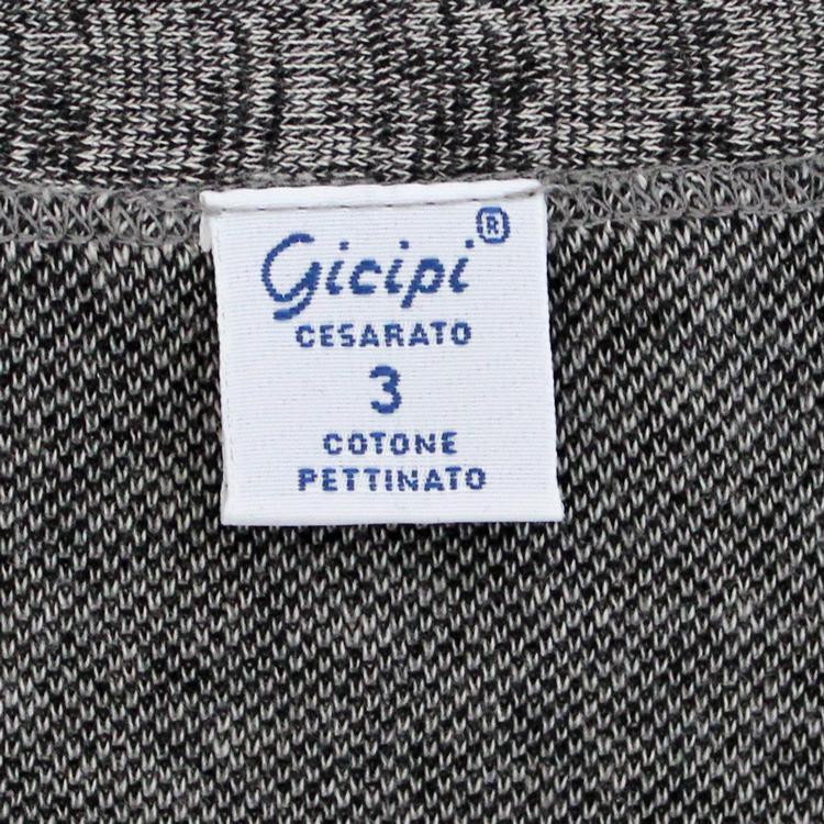 gicipi1801-0048-20