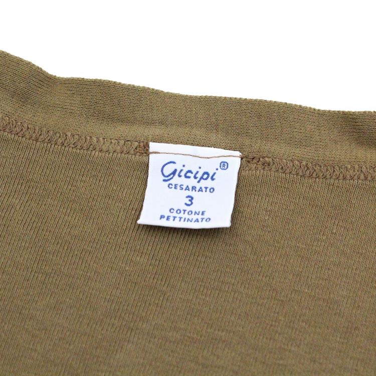 gicipi1802-0038-20