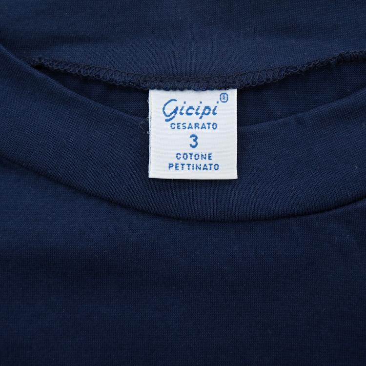 gicipi2001-0104-70