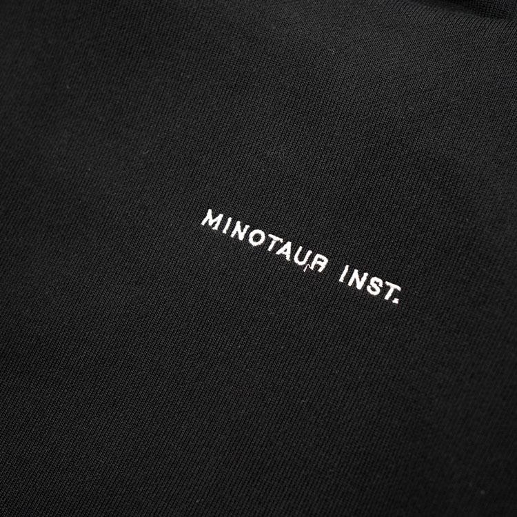 minotaurinst2101-0083-20